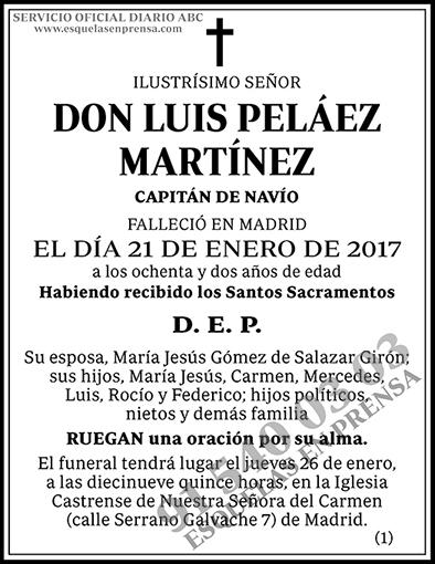 Luis Peláez Martínez